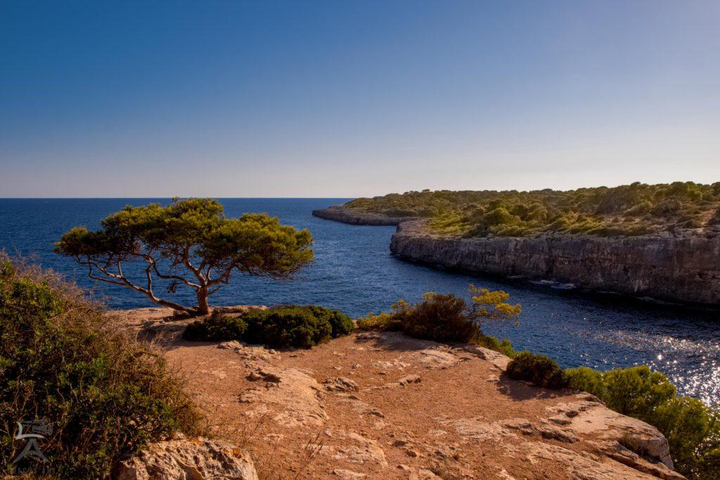 Spanien, Mallorca, Landschaft